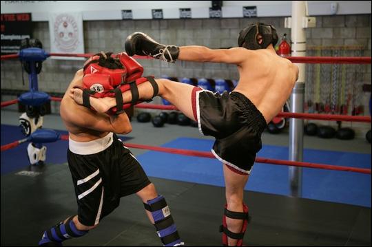 protege tibia boxe entretien